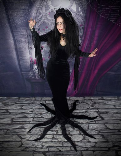 Carolyn Jones Morticia Dress